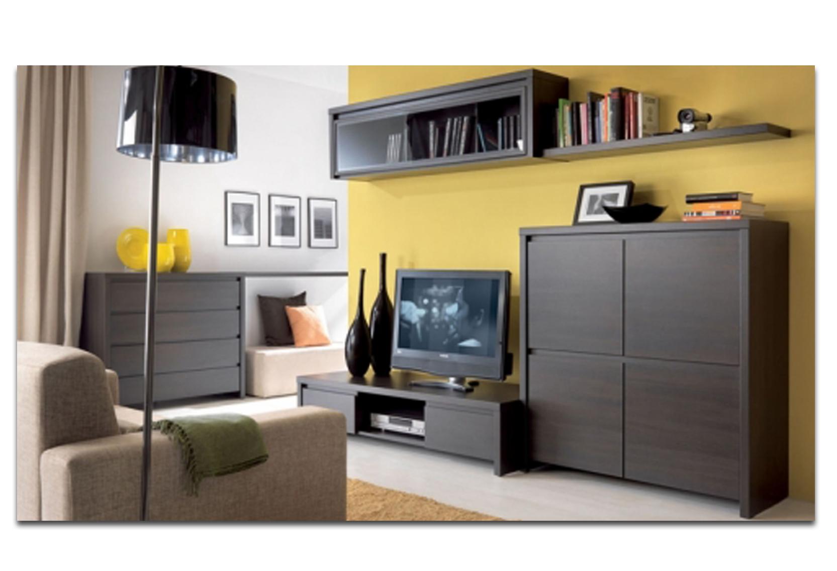 Мебель Для Кухни Гостиной Фото